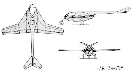 "Opération ""Kill the King"" [ Arado Ar. E.555 Revell 1/72 ] 3bmlibel"
